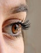 eye-211610__180
